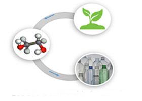 Renewable Ethylene